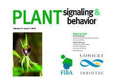 La inhibición de una proteína clave para el crecimiento y el desarrollo de plantas aumenta la resistencia a uno de los patógenos más peligrosos de cereales