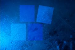 """El agua elemento vital: """"Cianobacterias"""" Capítulo 1"""