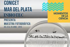 """INBIOTEC en la muestra fotográfica """"Momentos de la Ciencia"""""""